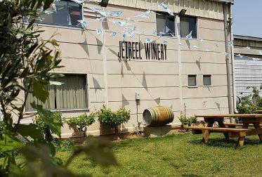 jezreel-valley-winery