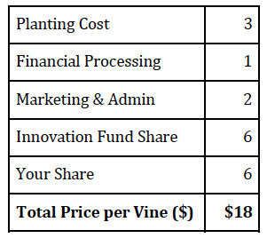 breakdown-of-cost-per-vine